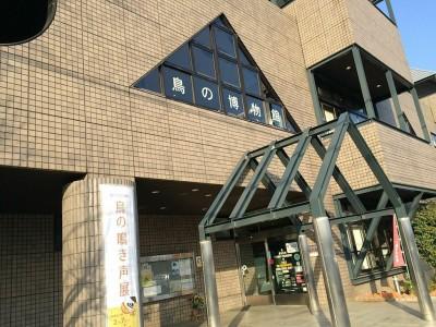 手賀沼親水広場・水の館目の前にある日本唯一の鳥の博物館