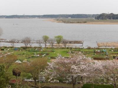 高野山桃山公園から手賀沼を見下ろす