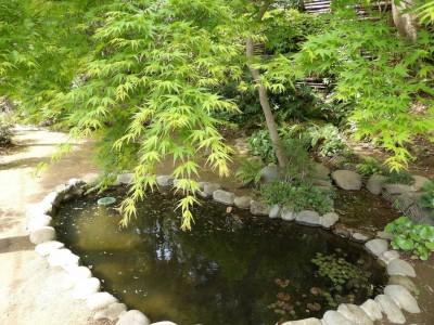 旧村川別荘入口の紅葉と池